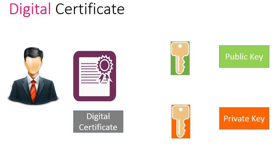 Bidding digital certificates